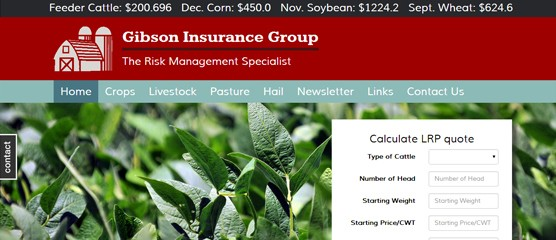 Gibson Insurance Group Site with Instant Quote and Mobile Edition